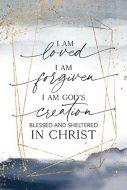 Framed/Heaven-Sheltered in Christ  5600