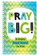 Pray Big! : A Mighty Prayer Journal for Kids
