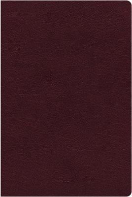 NIV Thinline Reference Burgundy Large Print