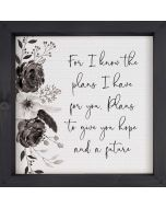 Framed Art: For I Know The Plans I Have for You, Textured Backing, WPM0021