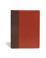 CSB Life Essentials Interactive LtrTouch-Brown