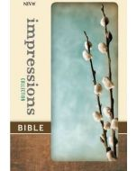 NIV Impressions Collection Bible (Turquoise/Gray)
