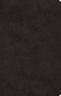 ESV Large Print Value Thinline Bible-TruTone, Black