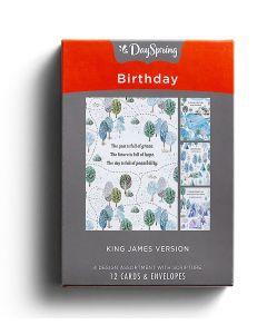 Boxed Cards-Birthday Camping Fun KJV, J3354