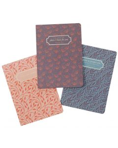 Notebook Set/3-I Know the Plans, Large, NBS033