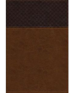 NIV Study Bible Rev LGE Pr LtrSoft-Brown, Red Lt