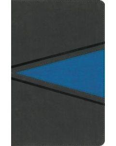 NIV  Boys' Bible  Leathersoft  Gray/Blue  Comfort Print