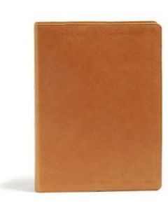 CSB Holy Land Illustrated Bible LeatherTouch-Ginger