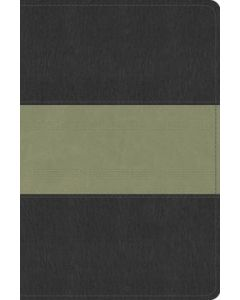 ESV Study Bible Pers.Size-Charcoal/Sage