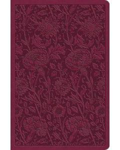 ESV Value Compact Bible (Raspberry)