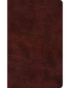 ESV Large Print Thinline Bible TruTone-Mahogany