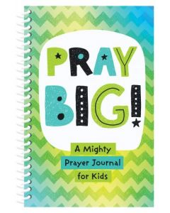 Pray Big! : A Mighty Prayer Journal for Kids