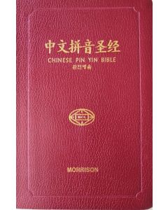Chinese Union New Punct.PIN YIN Bible-Vinyl Edn (NETT)