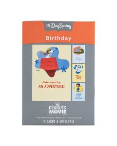 Boxed Cards-Birthday Peanuts Adventure (20347)
