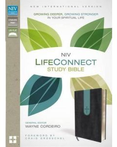 NIV LifeConnect Study Bible - Gray/Blue