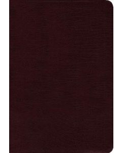 Contemporary Comparative Side-by-Side Bible: NIV/NKJV/NLT/The Message (Bonded leather burgundy)