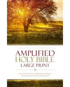 Amplified Bible Large Print-HC (Rev)