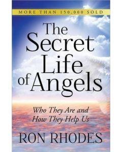 The Secret Life of Angels