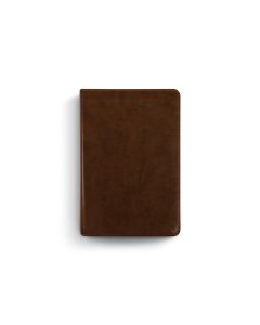 ESV Study Bible Personal Size TruTone-Brown